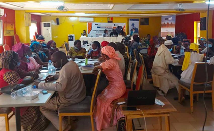 Prévention de l'Extrémisme violent à Kédougou : « Il faut éviter que les groupes terroristes trouvent des couveuses locales dans l'Est du Sénégal » Dr. Bakary Sambe